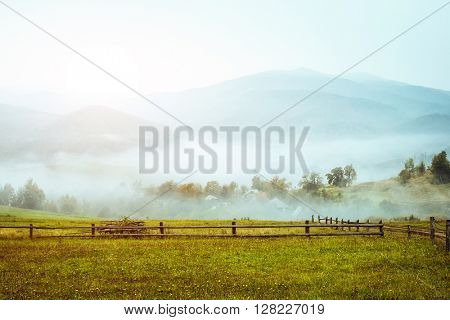 View of the green hills which glowing by sunlight. Dramatic scene and picturesque picture. Location place Carpathian, Ukraine, Europe. Beauty world. Soft filter, vintage style. Instagram toning effect
