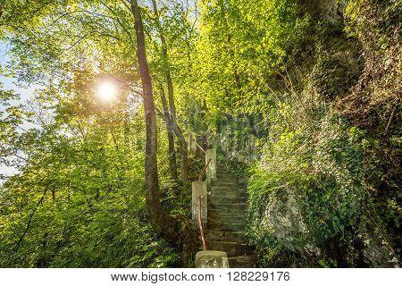 Stone Stairs Path