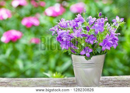 Bouquet of purple flowers in small bucket - horizontal