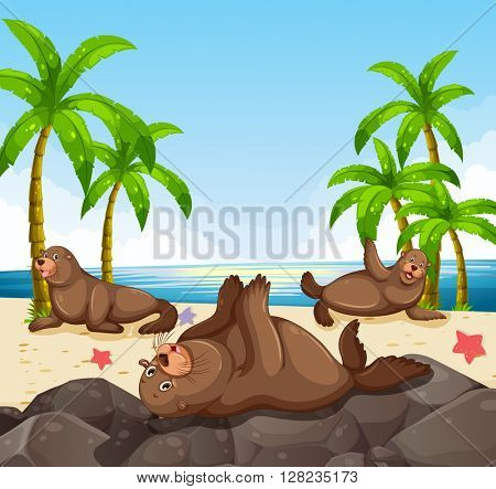 Seals having fun on the beach illustration