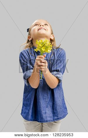 Studio portrait of a beautiful cute girl holding wild flowers