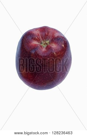 Red delicious apple (Malus domestica Red Delicious). Image of single apple isolated on white background