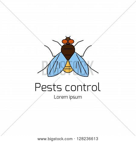 Pests control. Domestic insect pests. Thin line symbols of fly. Geometrical design element isolated on white background. Logotype by fly