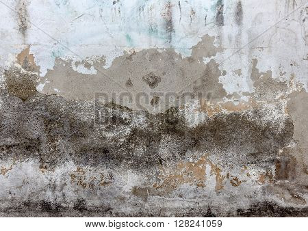 Earthy wall with white cracked paint texture.