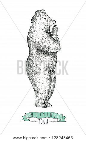 Hand drawn illustration of fun a bear isolated on vintage background. Print posture of morning practice pranayama asana pose yoga. Spirit graphic character. Workout sport