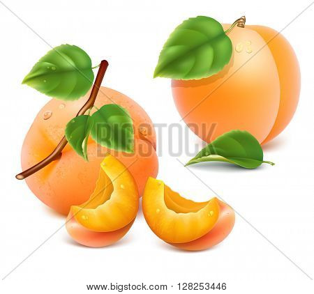 Apricots, slices of apricots with green leaves. Vector illustration.