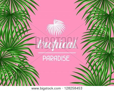 Paradise card with palms leaves. Decorative image tropical leaf of palm tree Livistona Rotundifolia. Image for holiday invitations, greeting cards, posters, brochures and advertising booklets.