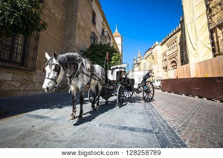 Traditional Horse and Cart at Cordoba Spain - travel background