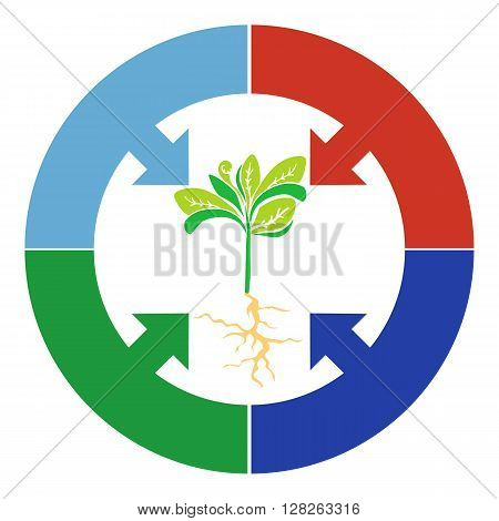 Elements Infographic plant growth stage germination of grain beans seeds. Adult plant with large leaves and a circle arrow.
