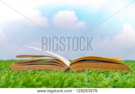 Blank catalog, magazines,book mock up on  green grass