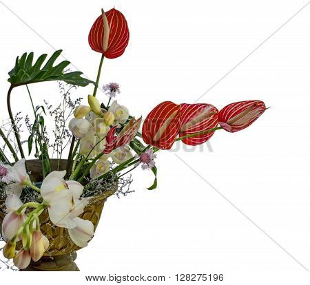 Isolated Bouquet Of Anthurium Flowers