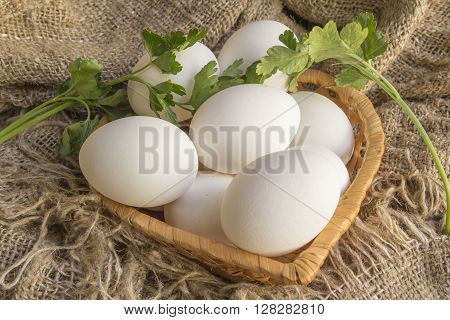 white eggs and green sprig of parsley on canvas