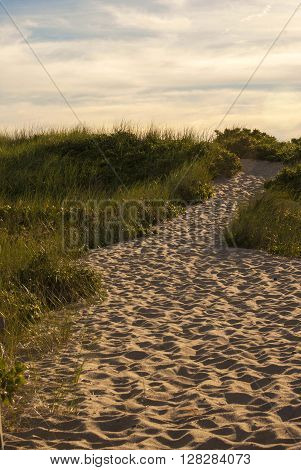 A photo of a sandy path to the beach.