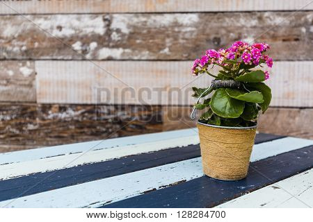 Flowers in a pot on a wooden table, old background