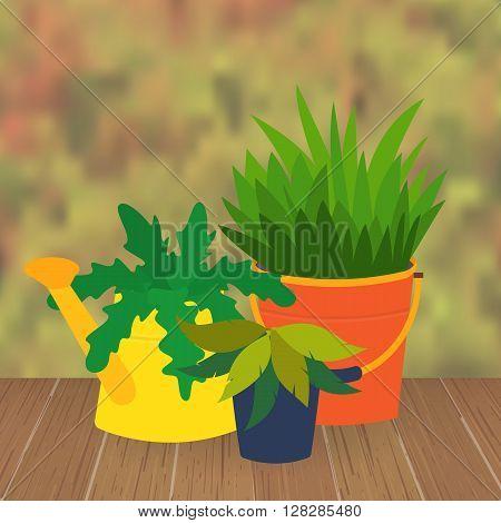 Flower bed and garden flower pots. Garden pots decoration. Original garden flower pots from bucket and watering can. Vector  illustration