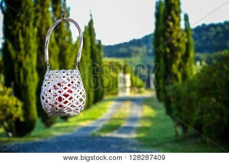 Cadle In A Lantern