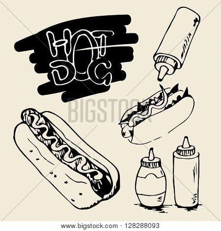 Hot Dog hand drawn illustrations. Fast food design elements sketches of hotdogs with sauce and mayonnaise. Plastic bottles with sauce and mayonnaise. Monochrome EPS8 vector graphics.