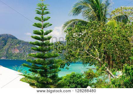 Green Getaway Island Lagoon