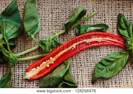 Fragrant Spices Chili Pepper And Fresh Basil On Burlap