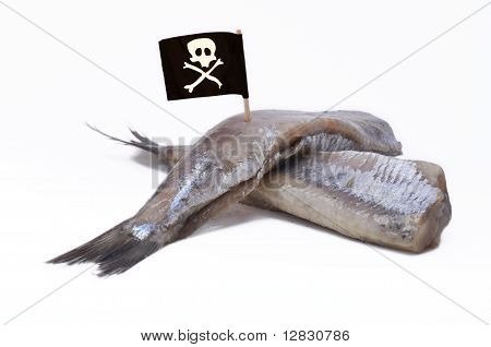 Pirate flag on fish