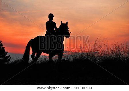 A Rider Silhouette