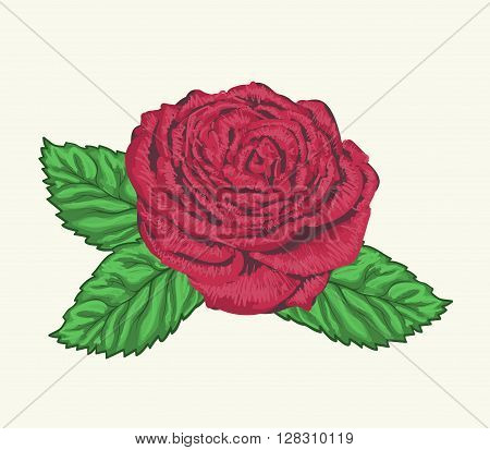 Beautiful rose bud with leaves painted in watercolor styleisolated on white background.