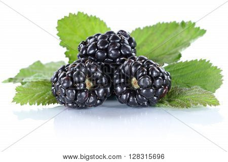 Blackberry Fruit Blackberries Berry Berries Fruits With Leaves Isolated On White