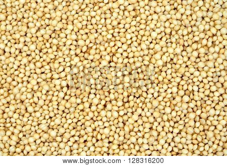 Background of healthy amaranth seeds close up