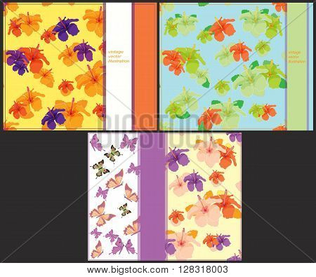 set the pattern bright to cards with butterflies and hibiscus vector illustration
