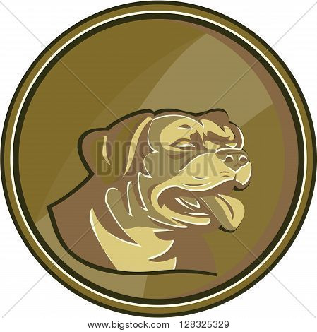 Illustration of a Rottweiler Metzgerhund mastiff-dog guard dog head viewed from the side set inside circle gold medallion done in retro style.