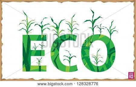 Vector think eco illustration with growing corn.