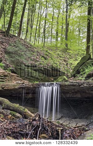 Maidenhair Falls a waterfall in Indiana's Shades State Park makes a small plunge over a rocky ledge in Pearl Ravine.