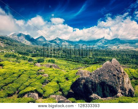 Vintage retro effect filtered hipster style image of green tea plantations with blue sky in mountains. Munnar, Kerala