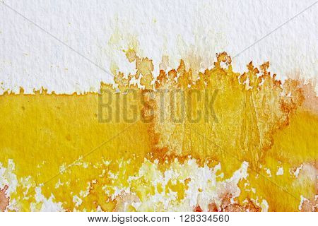 Yellow Watercolour Background 6