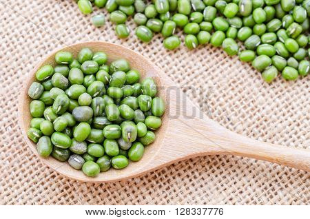 Mung beans in a wooden spoon on sack background.