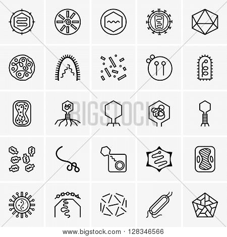 Set of different viruses on grey background
