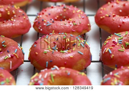 Pink icing doughnut with Sprinkles Isolated on White Background