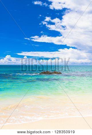 Heavenly Blue Shore Landscape