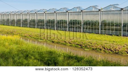 Large greenhouse on a sunny day in the spring season. In front of the greenhouse is a narrow ditch with a reflecting water surface.