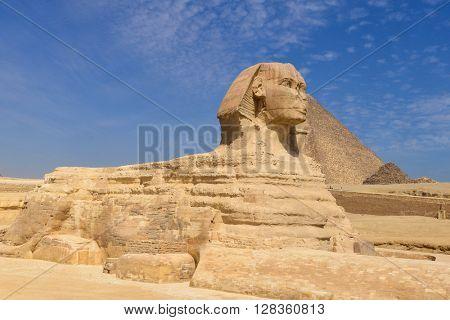 Sphinx in Giza Pyramids - Cairo, Egypt
