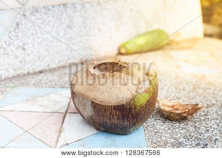 open fresh coconut fruit on sement table