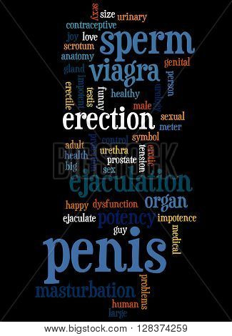 Penis, Word Cloud Concept 3