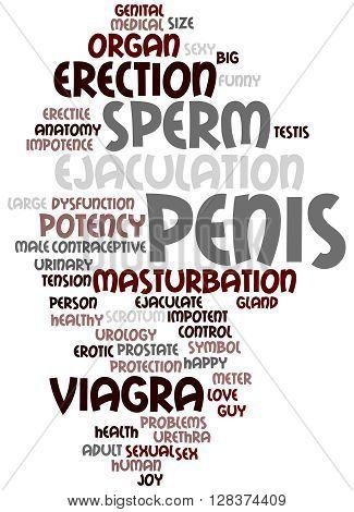 Penis, Word Cloud Concept 7