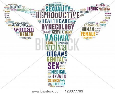 Vagina, Word Cloud Concept 2