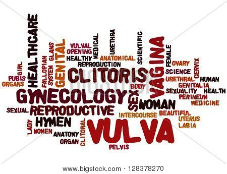 Vulva, Word Cloud Concept 3