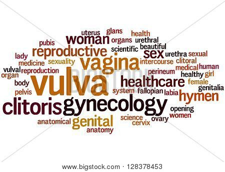 Vulva, Word Cloud Concept 7
