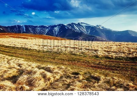 Great view of the snow range under overcast sky. Dramatic scene and picturesque picture. Location place Carpathian, Ukraine, Europe. Beauty world. Retro and vintage style. Instagram toning effect.