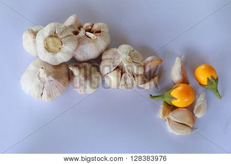 Shallot and garlic on the white background.