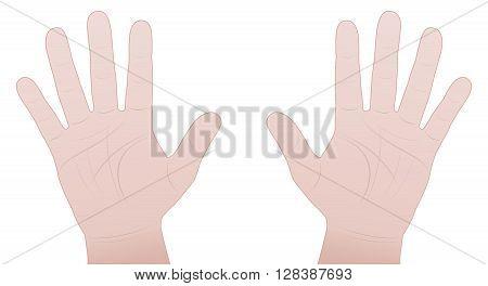Male hands - inner hand comic vector illustration on white background.
