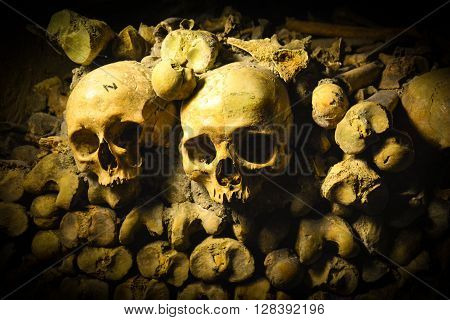 Skulls & Bones In Catacombs, Paris